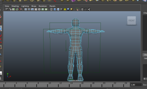 Complete body from neck down.
